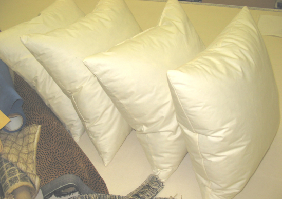 Picture of Pillow Forms- Knife Edge