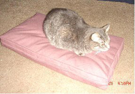 Picture of Poly Fill Filling - Pet Bed- Box Style
